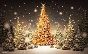 christmass-trees
